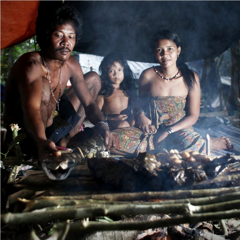 Sumatra Rainforest and The People Inside