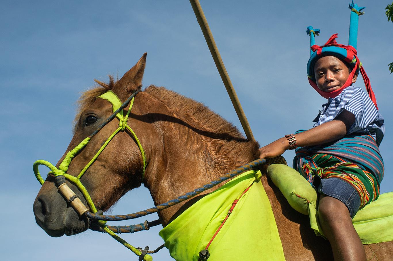 Kuda dan Indentitas Ras di Sumba